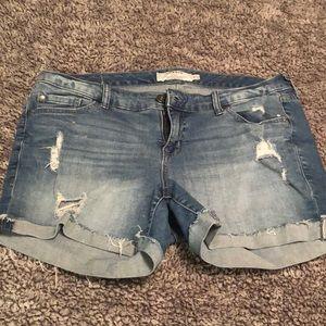 Torrid Denim Shorts distressed